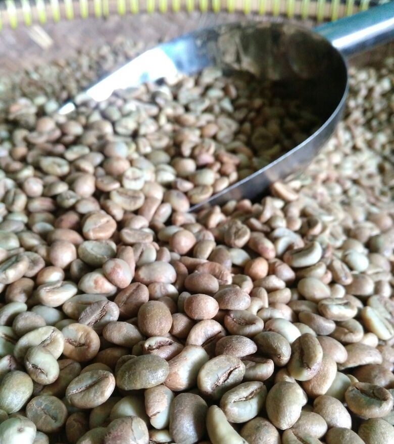 Foto: Proses paska panen kopi robusta Pesangkalan Banjarnegara metode huney (Dokumen Pribadi)